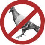 Засоби захисту від птахів