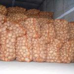 Продам оптом картофель