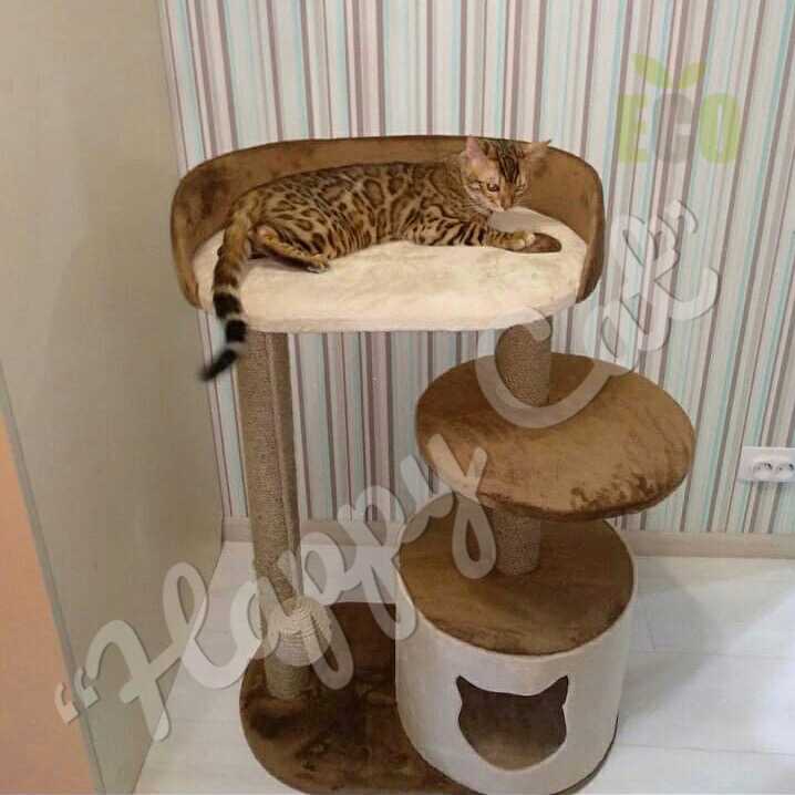 Домики для котов, дряпки, когтеточки