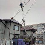 Спилить дерево любой сложности в Одессе