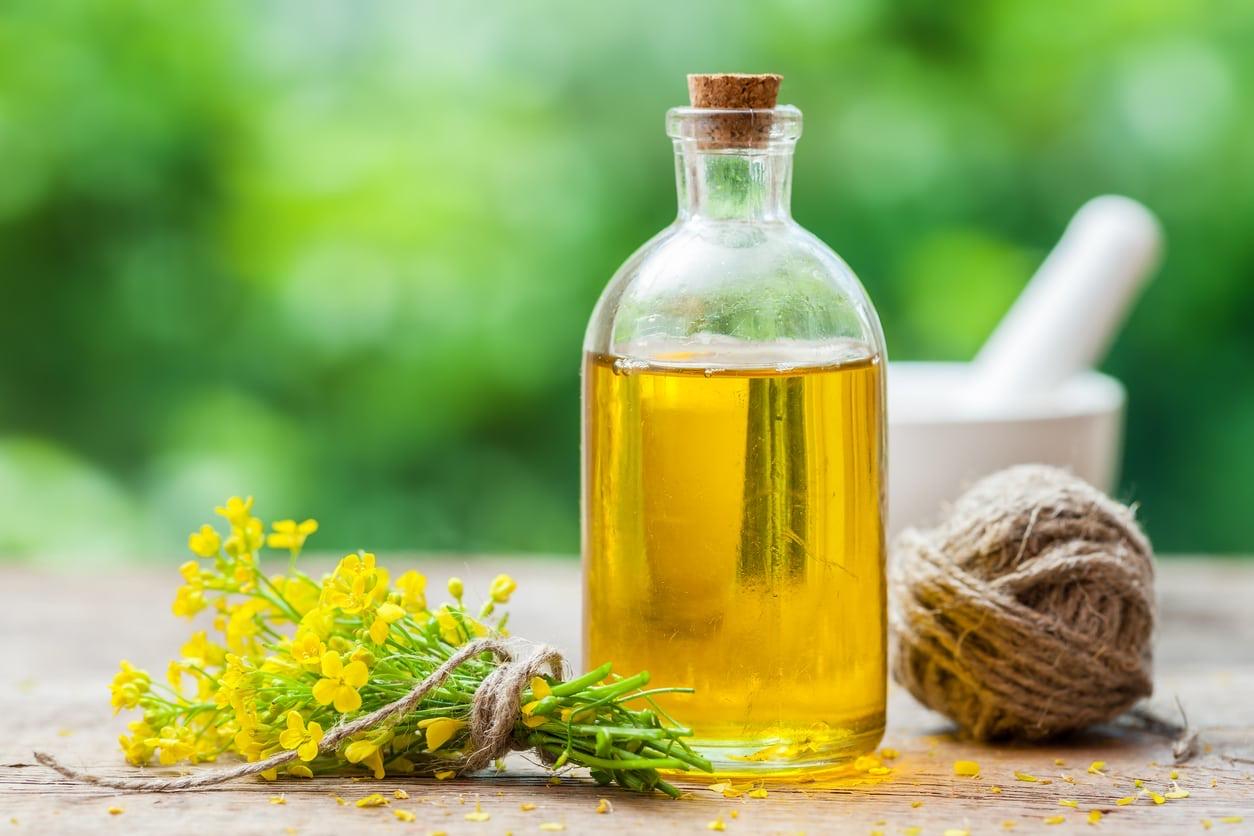 Buy raw sunflower oil Flexitank